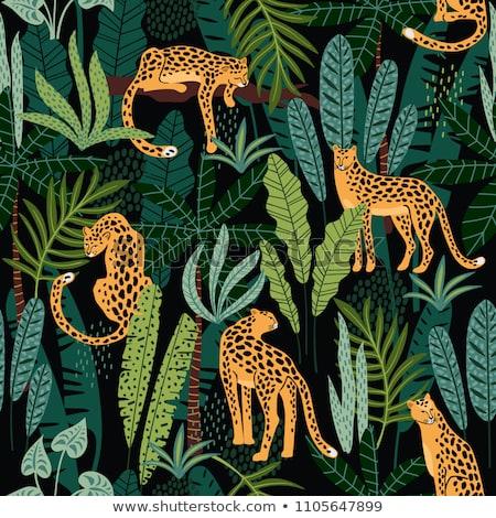Leopard in the jungle Stock photo © adrenalina