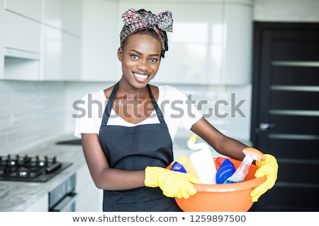 A house servant Stock photo © bluering
