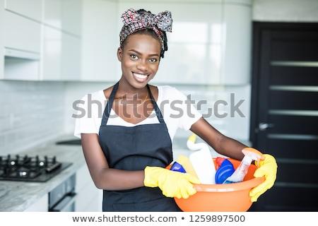 Casa servente ilustração branco trabalhar trabalhando Foto stock © bluering