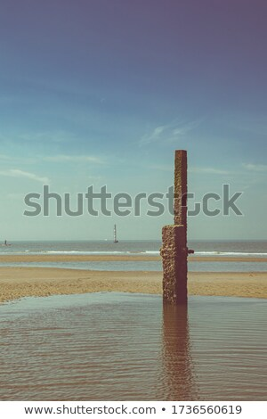 background of water in a pond with mooring poles stock photo © adrian_n