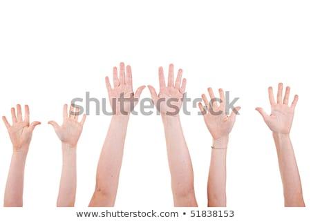 insan · eli · yalıtılmış · palmiye · kolun · ön · kısmı · beş - stok fotoğraf © zurijeta
