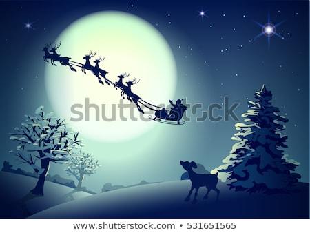 Noel baba ren geyiği dolunay gece gökyüzü Noel Stok fotoğraf © orensila