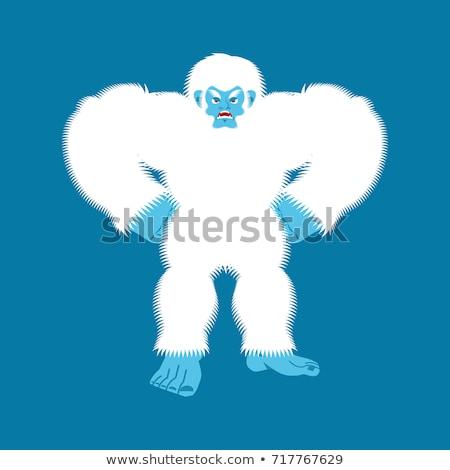 Yeti angry. Bigfoot evil. Abominable snowman aggressive. Vector  Stock photo © popaukropa
