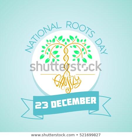 Diciembre raíces día calendario tarjeta de felicitación vacaciones Foto stock © Olena