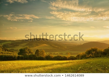 beautiful autumn landscape in the mountains with the setting sun stock photo © kotenko
