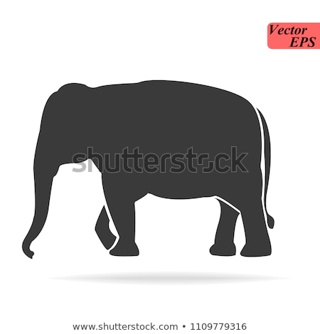 Elephant cartoon silhouette icon forest elephant  asian elephant african bush with large ears vector Stock photo © NikoDzhi