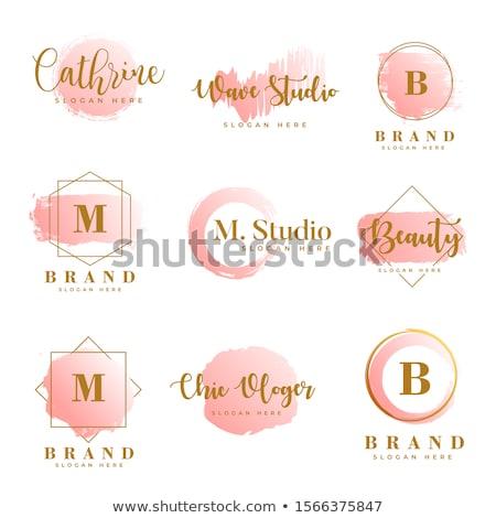 Stockfoto: Logo · schoonheidssalon · vrouw · gezicht · haren · roze