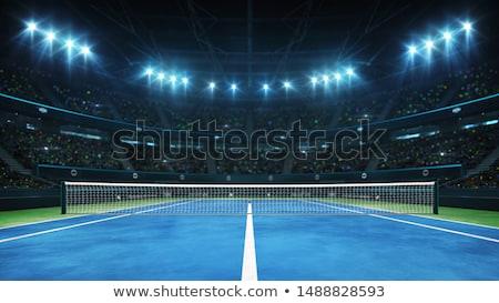 Quadra de tênis branco linhas ao ar livre grama artificial grama Foto stock © luissantos84