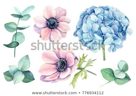 mavi · çiçekler · bağbozumu · düğün · davetiyesi · kart · düğün - stok fotoğraf © purplebird