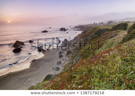 Bodeaga bay beach near arch rock  Stock photo © bobkeenan