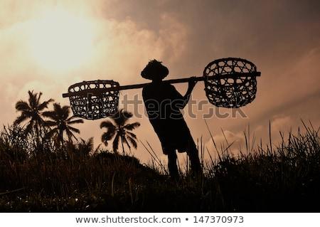 Férfi utazó rizs Bali Indonézia család Stock fotó © galitskaya