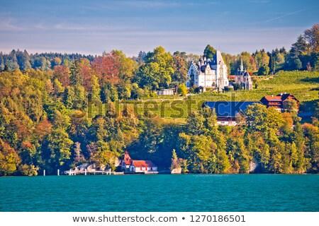 Château idyllique lac paysage vue central Photo stock © xbrchx
