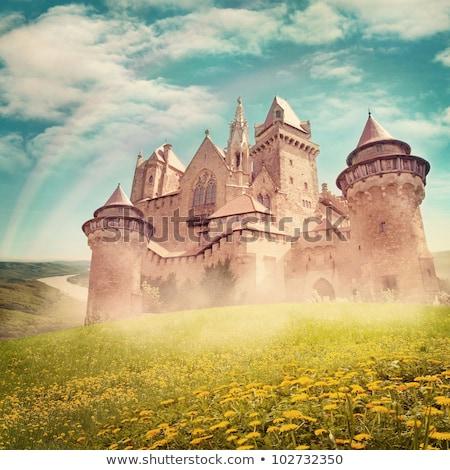Herceg hercegnő kastély illusztráció fa férfi Stock fotó © bluering