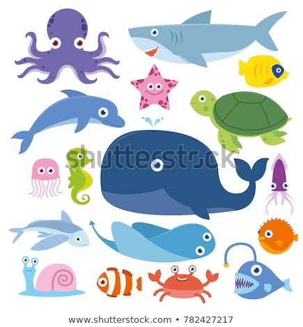 Mer créatures illustration beaucoup alimentaire poissons Photo stock © colematt
