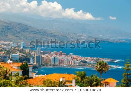 Skyline tenerife Spanje la stad vulkaan Stockfoto © neirfy