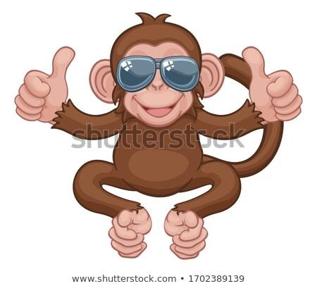 monkey sunglasses cartoon animal thumbs up sign stock photo © krisdog