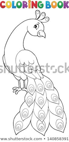 coloring book peacock theme 2 stock photo © clairev