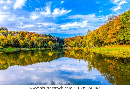 colorful autumn forest with lake on background stock photo © frimufilms