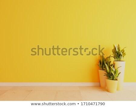 желтый стены белый керамической полу поверхность Сток-фото © sedatseven