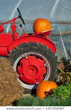 Arrugginito vecchio camion verde rosso vernice Foto d'archivio © pixelsnap