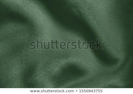 beautiful trendy green silk stock photo © stoonn