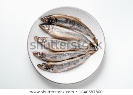 Damp meat on white plate Stock photo © RuslanOmega