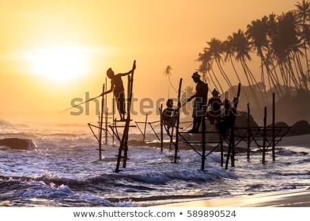 Ryb wygaśnięcia wody charakter morza ocean Zdjęcia stock © joyr
