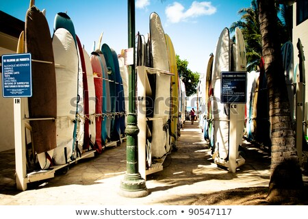 Row of Brightly Colored Surf Boards Stock photo © pixelsnap