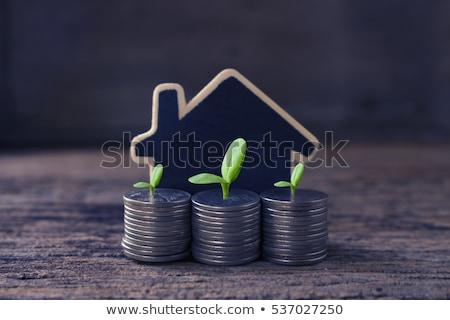 Gayrimenkul Bina inşaat model ev alışveriş Stok fotoğraf © rufous