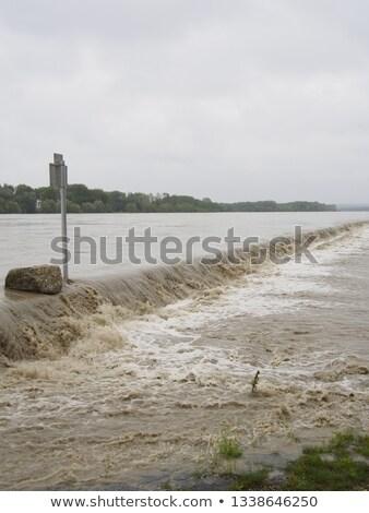 Danúbio inundação Foto stock © rbiedermann