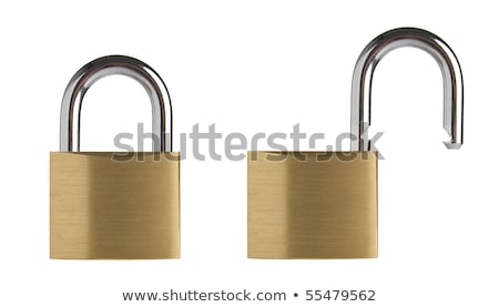 Set of two locked and unlocked locks Stock photo © AndreyKr