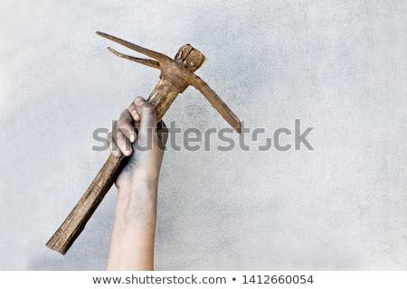 woman holding pick axe stock photo © photography33