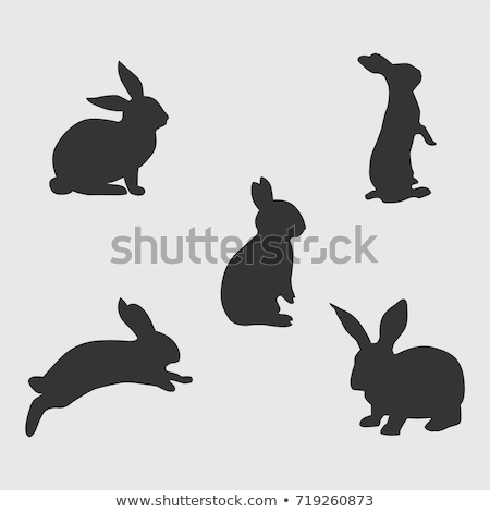 rabbits silhouettes set stock photo © Kaludov