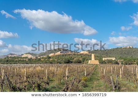Landscape in Mallorca Stock photo © RazvanPhotography