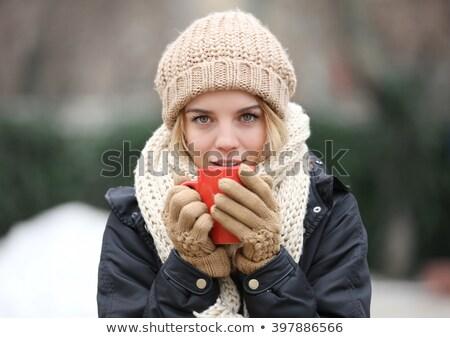 Blonde vrouw warm vrouw sneeuw berg Stockfoto © photography33