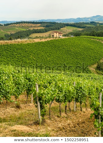 Tuscany landscape near San Gimignano Stock photo © prill