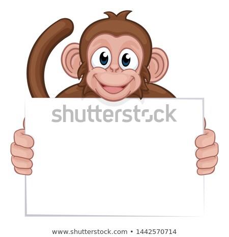 шимпанзе продовольствие знак весело Живопись Сток-фото © dagadu
