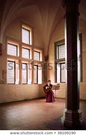 Nő játszik gitár kastély ül nagy Stock fotó © Fisher