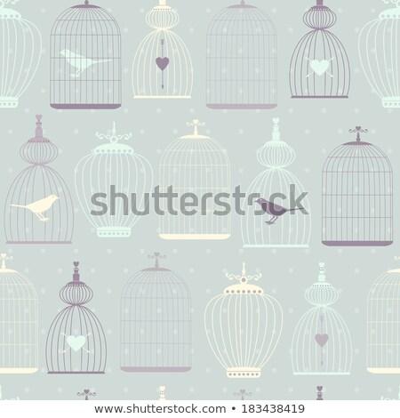 gaiola · lustre · vetor · vintage · cristal · aves - foto stock © beaubelle