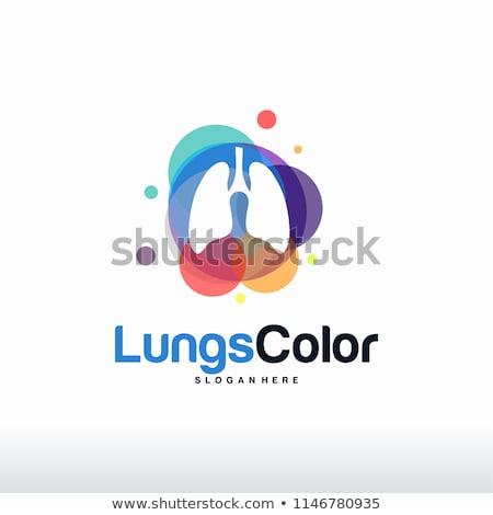 Emberi szín textúra absztrakt tudomány piros Stock fotó © 4designersart