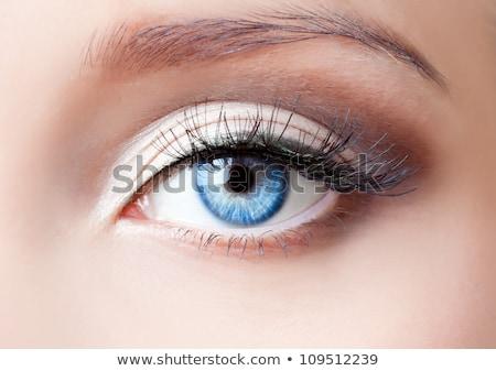 güzel · göz · makyaj · sarışın · kadın - stok fotoğraf © geribody