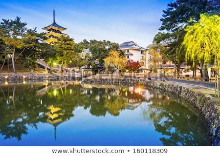 buddhista · templom · Japán · épület · naplemente · utazás - stock fotó © cozyta