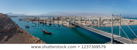 Omán · hagyományos · égbolt · fa · építkezés · tenger - stock fotó © w20er