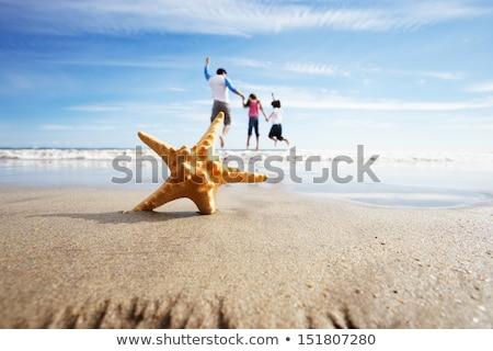 kinderen · zeester · strand · meisje · kind · zee - stockfoto © monkey_business