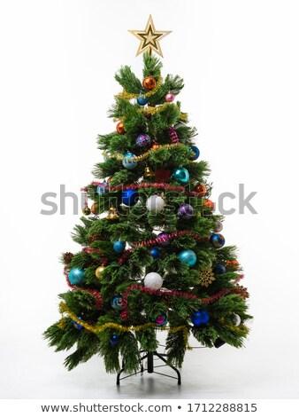 Cute Christmas tree isolated Stock photo © marimorena