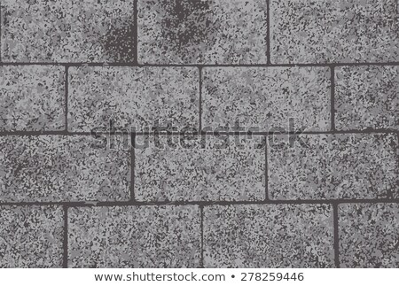 Wavy Paving Slabs in Brown Colors. Stock photo © tashatuvango