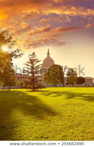 建物 · ワシントンDC · 日没 · 庭園 · 米国 · 家 - ストックフォト © lunamarina