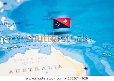флаг Pin Папуа-Новая Гвинея изолированный белый Сток-фото © MikhailMishchenko