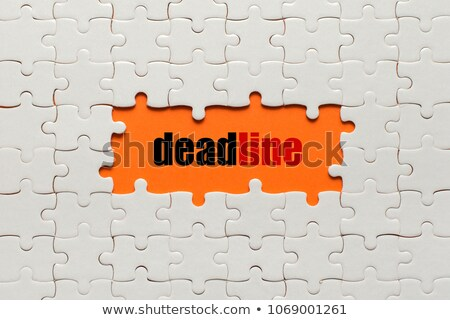 Hurrying - Text on Red Puzzles. Stock photo © tashatuvango