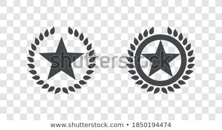Texas babér levél csillag fóka kék Stock fotó © Bigalbaloo
